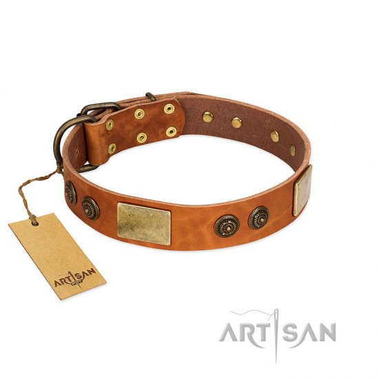 """Bronze Century"" FDT Artisan Tan Leather dog Collar with Plates and Brooches with Cool Ornament"