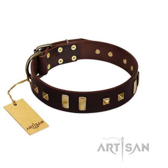 """Choco Delight"" FDT Artisan Brown Leather dog Collar with Old Bronze-like Plates and Studs"