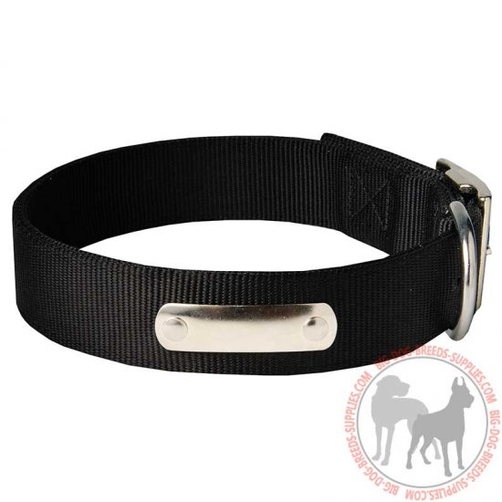 All Season Nylon Dog Collar with with Name Tag (Identification Tag)
