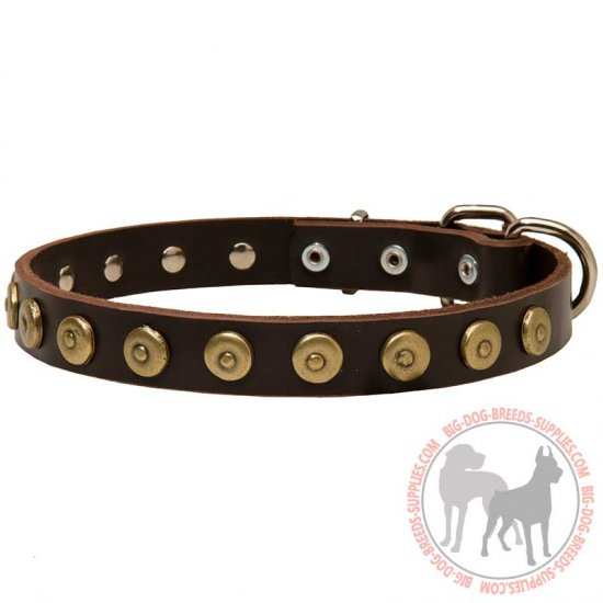 Walking and Training Leather Dog Collar With Doted Circles