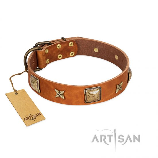 """Celtic Tunes"" FDT Artisan Tan Leather dog Collar Adorned with Stars and Squares"