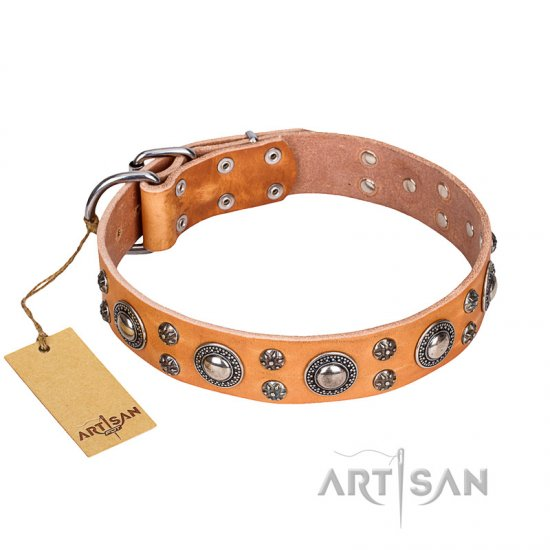 'Extra Sparkle' FDT Artisan Handcrafted Tan Leather Dog Collar