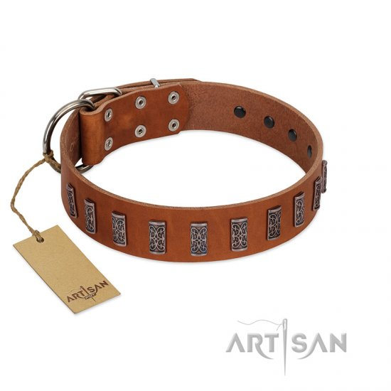 """Silver Century"" Fashionable FDT Artisan Tan Leather dog Collar with Silver-Like Plates"