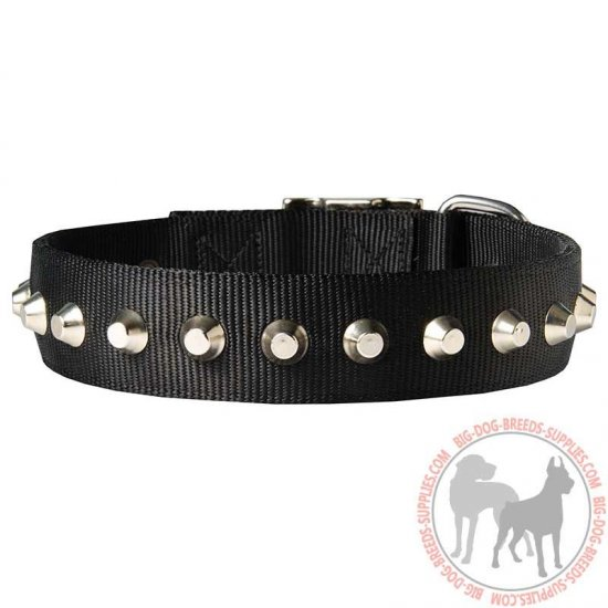 Beautiful Wide Nylon Dog Collar With Nickel Pyramids