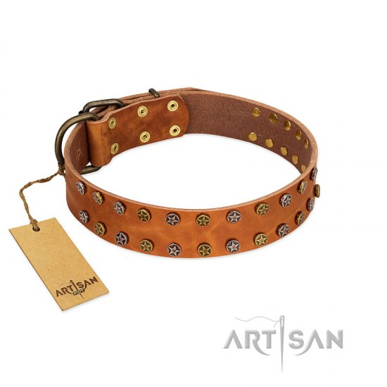 """Walk and Shine"" FDT Artisan Tan Leather dog Collar with Antiqued Studs"