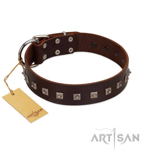 """Kingly Grace"" FDT Artisan Brown Leather dog Collar with Silver-like Dotted Studs"