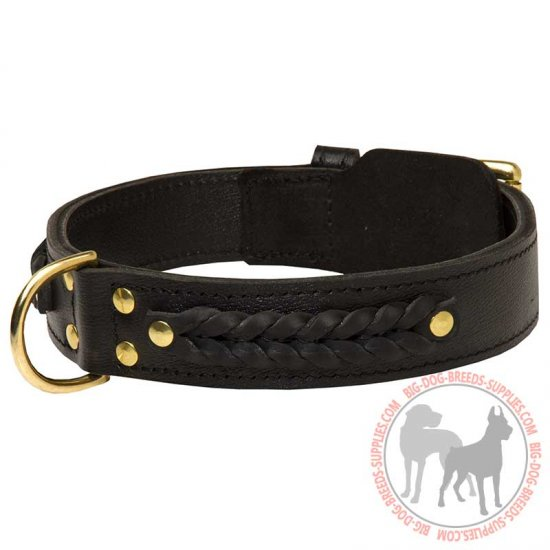 Braided Wide 2 ply Leather Dog Collar for Fashion Walking & Training