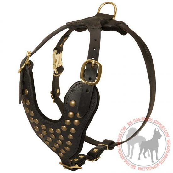Designer Leather Dog Harness with Studded Breast Plate