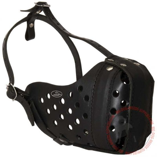 Heavy-Duty Leather Dog Muzzle for Attack / Agitation Training