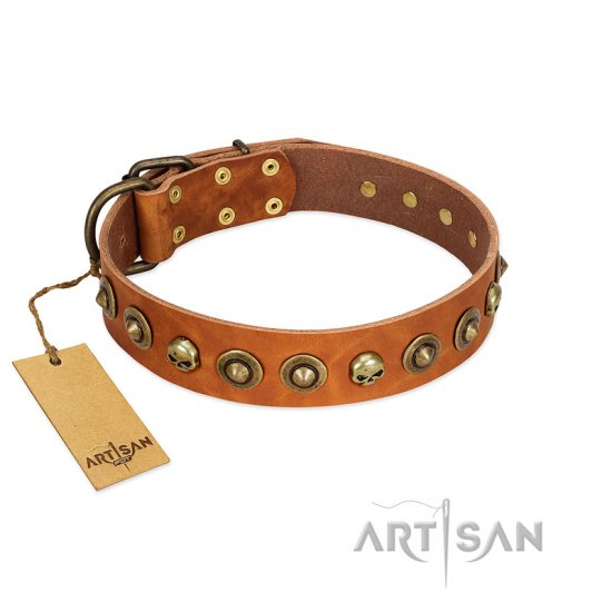 """Prez of the Pack"" FDT Artisan Tan Leather dog Collar with Skulls and Brooches"