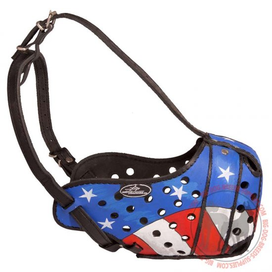 Adjustable Handpainted Leather Dog Muzzle for Agitation Training