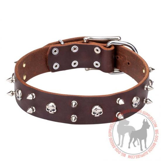 """Blackbeard"" Leather Dog Collar with Skulls and Spikes Decor"