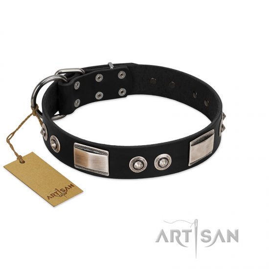 """Grand Wear"" FDT Artisan Black Leather dog Collar with Shining Plates and Spiked Studs"