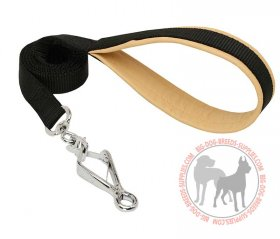 Dog Lead For All-weather Walking And Taraining