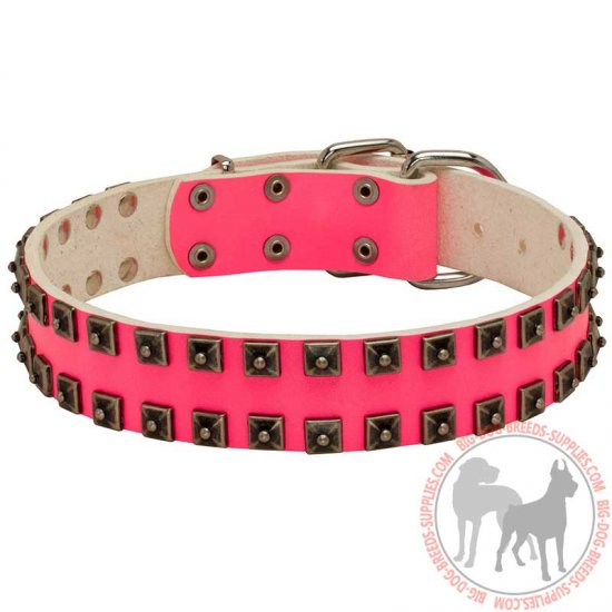 Pink Leather Dog Collar with Studs for Walking and Training