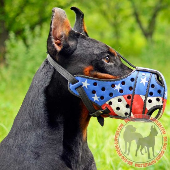 Painted Leather Doberman Muzzle for Attack Training