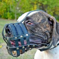 Leather Basket American Bulldog Muzzle for Daily Walking and Training