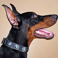 Walking and Training Doberman Leather Collar with Blue Stones