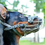 Felt Padded Wire Cage Doberman Muzzle for Walking