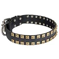 "Walking and Training Studded Leather Dog Collar ""Caterpillar"""