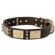 Wide Leather Decorated Dog Collar with Vintage Plates and Spikes for Big Breeds