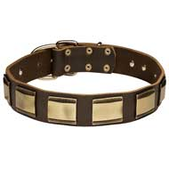 Unusually Decorated Leather Dog Collar With Brass Plates