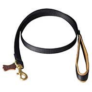 Dog Leash With Padded Handle For Walking And Training