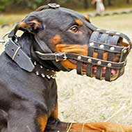 Ventilated Cage Mesh Leather Doberman Muzzle