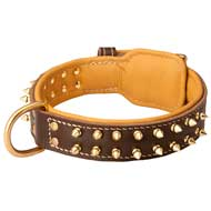 Walking Nappa Leather Dog Collar with Spikes