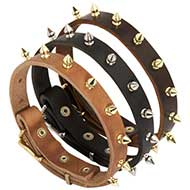Walking Spiked Leather Dog Collar