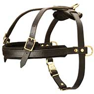 Pulling and Tracking Leather Dog Harness