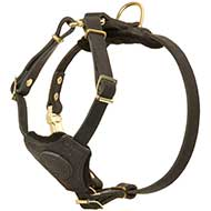 Training and Walking Puppy Leather Dog Harness