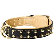 Nappa Padded Leather Dog Collar with Brass Spikes for Walking