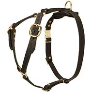 Leather Dog Harness for Tracking, Walking and Training