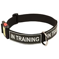 Strong Nylon Dog Collar with Identification Patches