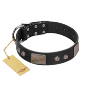 """Square Stars"" Modern FDT Artisan Black Leather dog Collar with Square Plates and Studs"