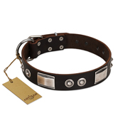 """Baller Status"" FDT Artisan Brown Leather dog Collar Adorned with a Set of Chrome Plated Studs and Plates"