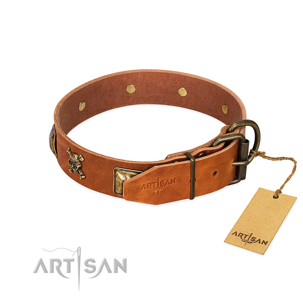 Stylish leather dog collar with corrosion resistant studs