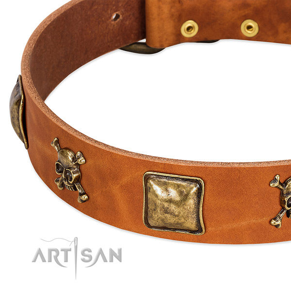 Incredible full grain genuine leather dog collar with strong embellishments