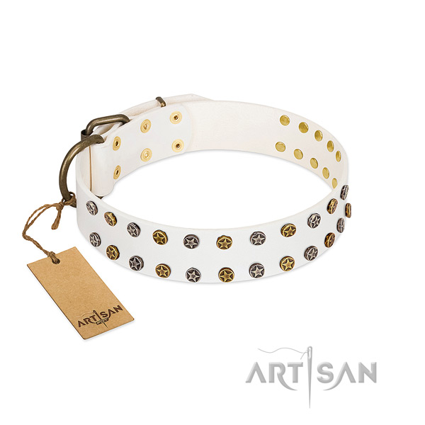 Trendy genuine leather dog collar with reliable studs