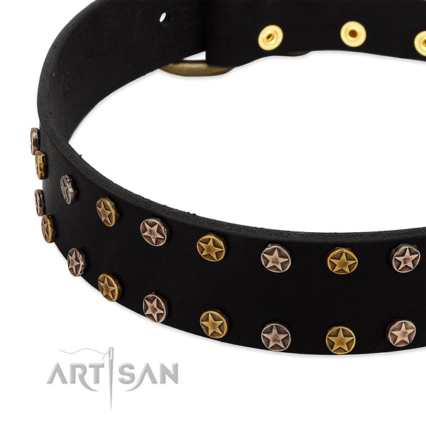 Impressive adornments on full grain natural leather collar for your canine
