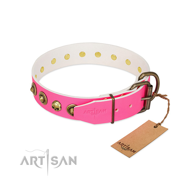 Natural leather collar with fashionable studs for your canine