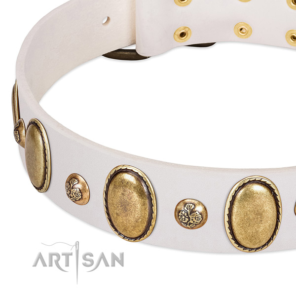 Natural leather dog collar with stunning studs