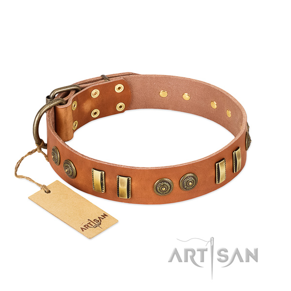 Durable embellishments on full grain natural leather dog collar for your dog