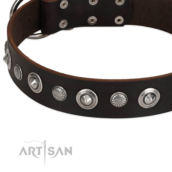 Fashionable studded dog collar of top notch genuine leather