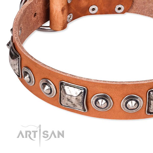 Strong genuine leather dog collar handcrafted for your beautiful pet