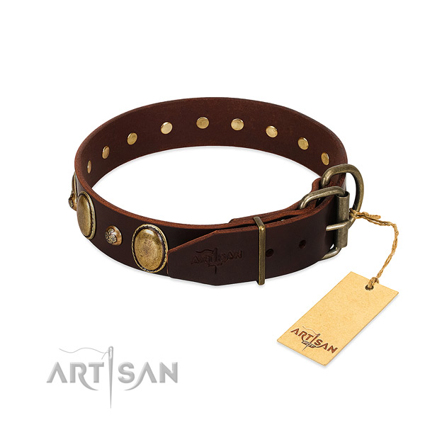 Corrosion resistant hardware on full grain leather collar for stylish walking your pet
