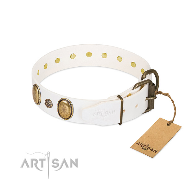 Stylish walking soft leather dog collar with embellishments