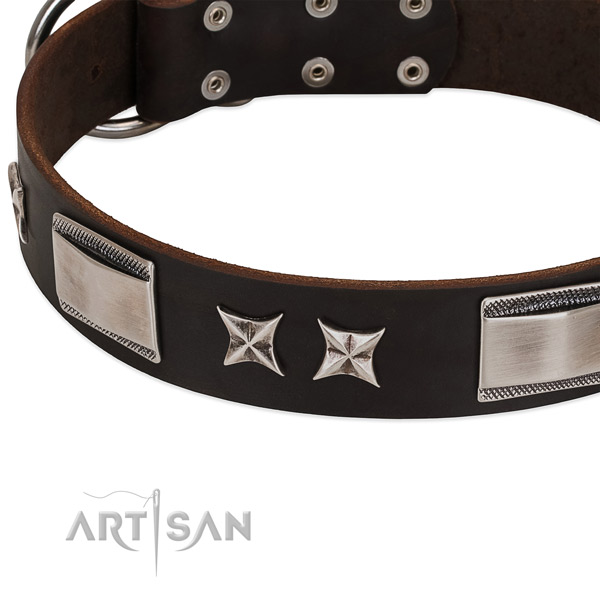 Top rate leather dog collar with durable hardware
