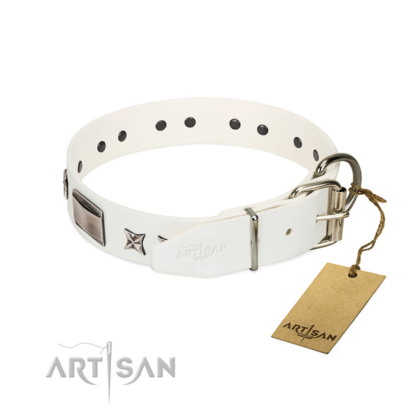 Top quality collar of leather for your impressive canine